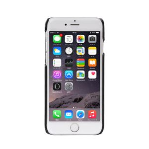 サンコー iPhone 6クーラーケース COLDPH6B f04