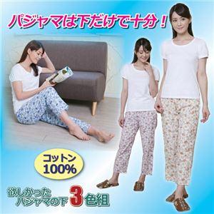 (まとめ)昭光プラスチック製品 欲しかったパジャマの下 3色組 3L 8091674【×2セット】 - 拡大画像