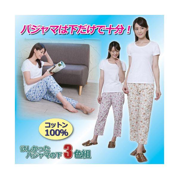 昭光プラスチック製品 欲しかったパジャマの下 3色組 3L 8091674【×2セット】f00