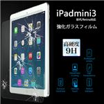 (まとめ)ITPROTECH 強化ガラスフィルム For iPad mini YT-GFILM-F/IPM【×5セット】