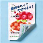 (まとめ)サンワサプライ インクジェット用両面印刷紙・厚手 JP-ERV5NB5【×10セット】