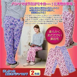 (まとめ)昭光プラスチック製品 欲しかった裏起毛パジャマの下2色組 L 8102072【×2セット】 - 拡大画像