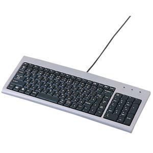 (まとめ)サンワサプライ スリムキーボード SKB-SL02【×2セット】 h01