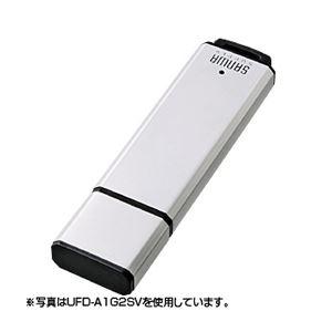 サンワサプライ USB2.0メモリ32Gシルバー UFD-A32G2SVK h01