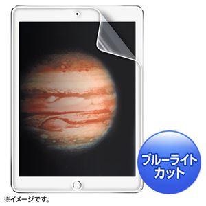 (まとめ)サンワサプライ iPadPro用ブルーライトカット液晶保護指紋防止光沢フィルム LCD-IPPBC【×2セット】