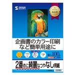 (まとめ)サンワサプライ インクジェットスーパーファイン用紙(B5) JP-EM4NB5N【×5セット】