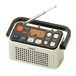 ツインバード 3バンドラジオ付ワイヤレス手元スピーカー シャンパンゴールド AV-J135G