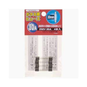 (まとめ)YAZAWAガラス管ヒューズ30mm250VGF30250V【×10セット】