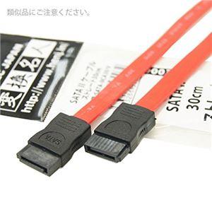 (まとめ)変換名人 SATA 2 ケーブル ストレート30cm SATA-IICA30/V【×10セット】 h01