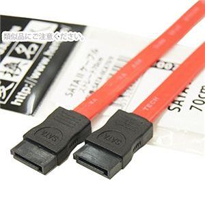 (まとめ)変換名人 SATA 2 ケーブル ストレート70cm SATA-IICA70/V【×10セット】 h01