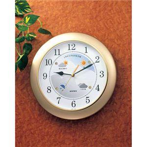 EMPEX掛け時計ウォールクロックウェザーパルBW-5048シャンパンゴールド