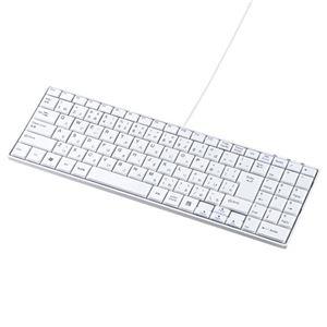 (まとめ)サンワサプライ USBスリムキーボード SKB-SL17WN【×2セット】 h01