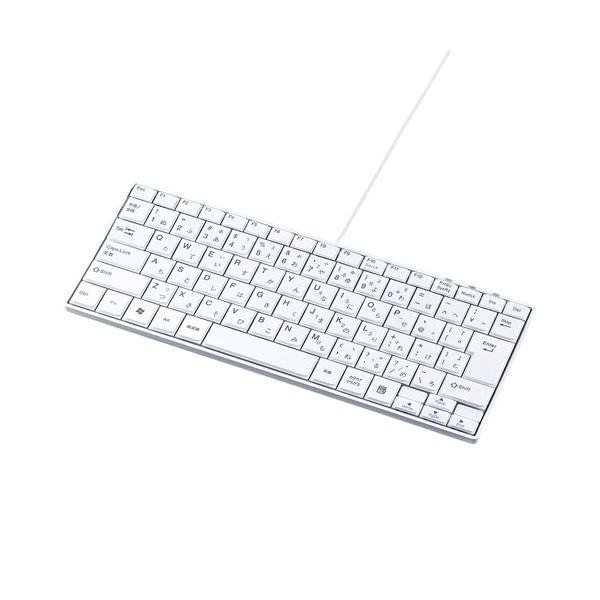 (まとめ)サンワサプライ USBスリムキーボード SKB-SL18WN【×2セット】f00