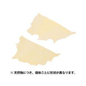 (まとめ) エツミ セーム革 L E-5276 【×2セット】