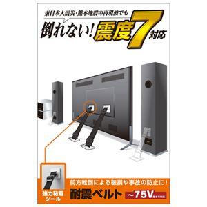 エレコムTV用耐震ベルト/〜75V用/強力粘着シールタイプ/2本入TS-002N2