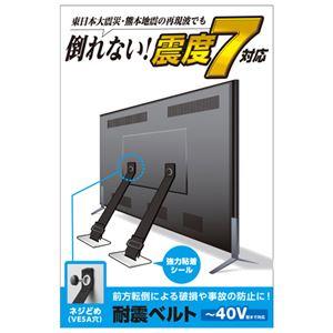 エレコムTV用耐震ベルト/〜40V用/ネジどめタイプ(VESA穴)/2本入TS-005N