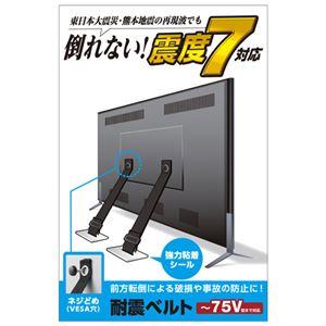 エレコムTV用耐震ベルト/〜75V用/ネジどめタイプ(VESA穴)/2本入TS-006N