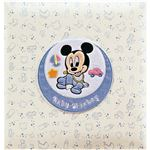 フエルアルバム ベビーミッキー&フレンズ アルバム ミッキー C7070537 C8066049