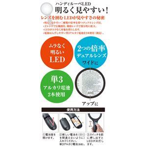 (まとめ) エツミ ハンディルーペ LED 2× 5× VE-5512 【×2セット】