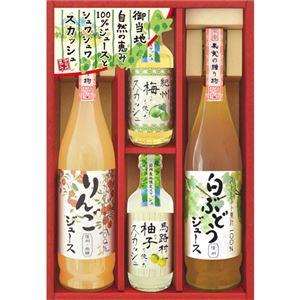 飛騨高山ファクトリー 自然の恵み 100%ジュース・ご当地スカッシュ C8250097