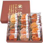 (まとめ)丸彦製菓 米一代 C7245604 C8238047【×2セット】