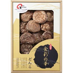 (まとめ)大分産椎茸どんこL2120038L3117537【×2セット】