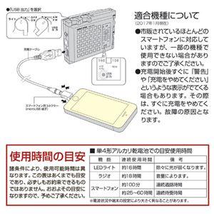 旭電機化成 スマートフォンが使えるラジオライト 811745