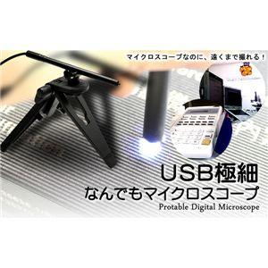 USB極細なんでもマイクロスコ―プ - 拡大画像