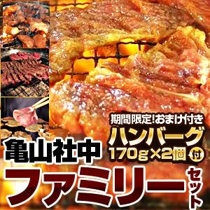 【2012年2月29日まで ハンバーグ2個おまけ付き】亀山社中 ファミリーセット 小 - 拡大画像