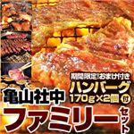 【2012年2月29日まで ハンバーグ2個おまけ付き】亀山社中 ファミリーセット 小