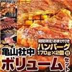 【2012年2月29日まで ハンバーグ2個おまけ付き】亀山社中 焼肉ボリュームセット 4kg