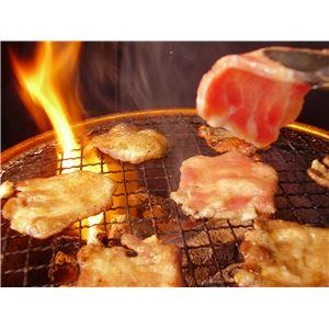 亀山社中 焼肉・BBQファミリーセット 大 3.46kg 画像4