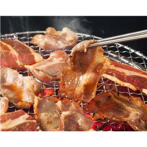 亀山社中 秘伝のもみダレ漬け焼肉・BBQ 牛カルビ 900g - 拡大画像