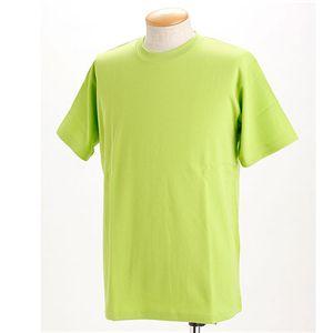ドライメッシュTシャツ 2枚セット 白+アップルグリーン 3L