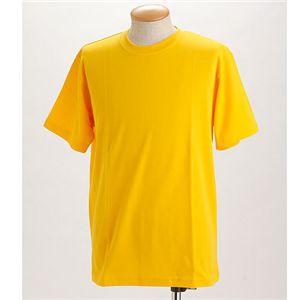 ドライメッシュTシャツ 2枚セット 白+イエロー 3L