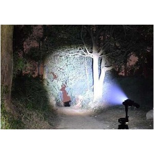 ズーム機能搭載 LEDフラッシュ ライトGZ98504画像4