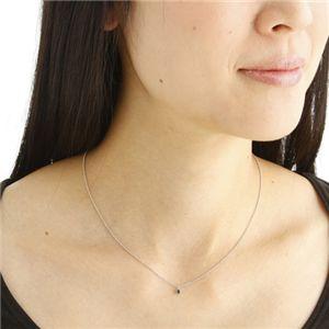0.1ctブラックダイヤモンドプチネックレス h03