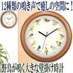 野鳥が鳴く大きな壁掛け時計