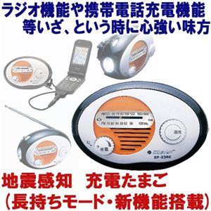地震感知 充電たまご(長持ちモード・新機能搭載) - 拡大画像