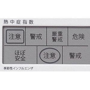 ADESSO(アデッソ) デジタル日めくり電波時計 C-8414画像3