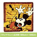 ディズニーボアラグ 「ランナウェイ」正方形185cm×185cm