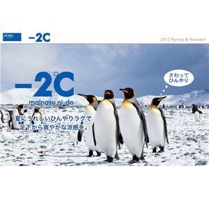 さわってひんやり接触冷感カーペット サイクロン2 190×240cm クールミント