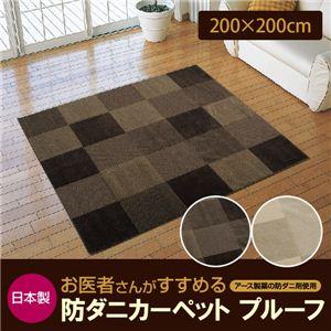 日本製 お医者さんがすすめる防ダニカーペット プルーフ 200×200cm 正方形 ブラウンの詳細を見る
