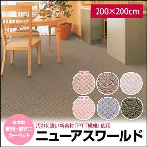 日本製 防汚・防ダニカーペット ニューアスワールド 200×200cm 正方形 ライトピンクの詳細を見る