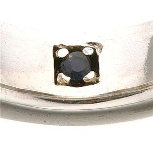ピュア ブルー ペアリング PBL006/アラベスク ブラック 21号 h02