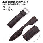 【腕時計用ベルト2本組】本革バンド クロコダイル柄型押し20mmダークブラウン