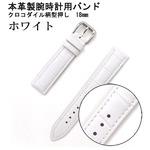 【腕時計用ベルト2本組】本革バンド クロコダイル柄型押し18mm ホワイト