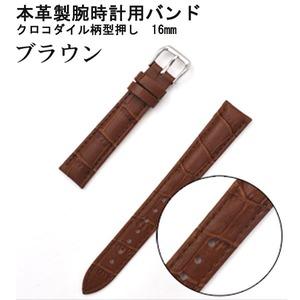 【腕時計用ベルト2本組】本革バンド クロコダイル柄型押し16mmブラウン - 拡大画像