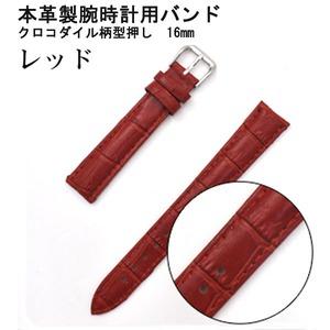 【腕時計用ベルト2本組】本革バンド クロコダイル柄型押し16mmレッド - 拡大画像
