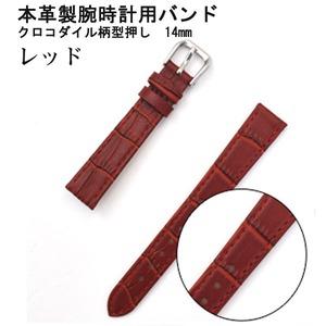 【腕時計用ベルト2本組】本革バンド クロコダイル柄型押し14mmレッド - 拡大画像